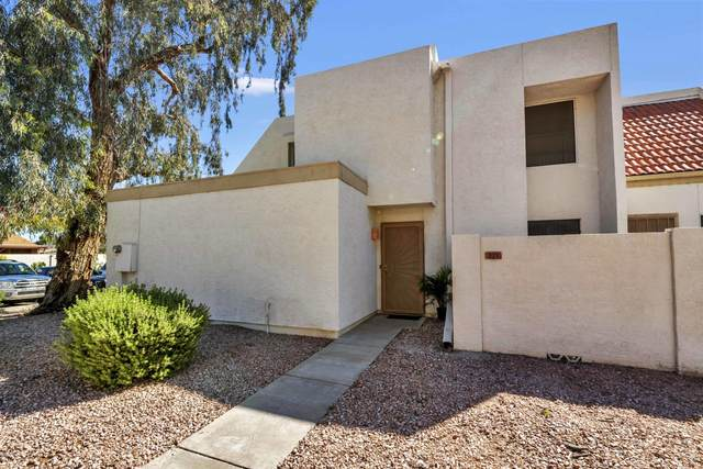 1342 W Emerald Avenue #271, Mesa, AZ 85202 (MLS #6059545) :: Long Realty West Valley