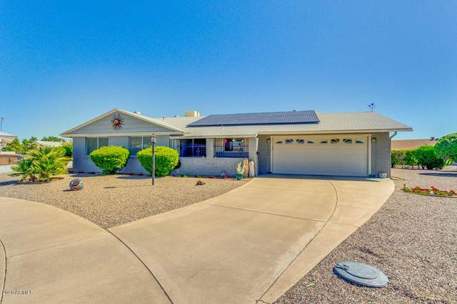10446 W Cumberland Drive, Sun City, AZ 85351 (MLS #6059550) :: Long Realty West Valley
