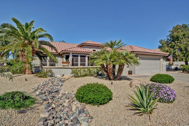 18102 N Petrified Forest Drive, Surprise, AZ 85374 (MLS #6059554) :: Long Realty West Valley