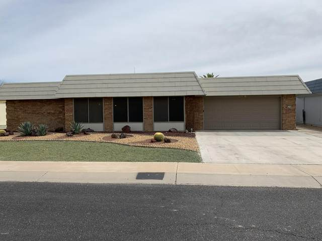 10709 W Hibiscus Drive, Sun City, AZ 85373 (MLS #6059564) :: Long Realty West Valley