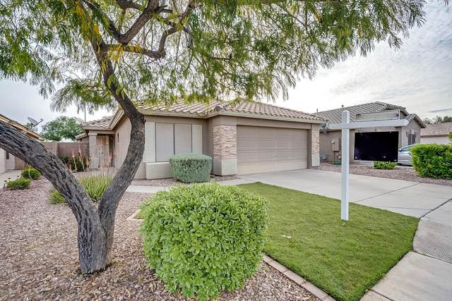 15822 W Tara Lane, Surprise, AZ 85374 (MLS #6059574) :: Long Realty West Valley