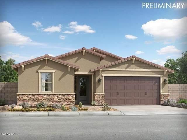 13568 N 142ND Avenue, Surprise, AZ 85379 (MLS #6059622) :: Long Realty West Valley
