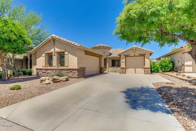 2644 W Coyote Creek Court, Phoenix, AZ 85086 (MLS #6059630) :: Conway Real Estate