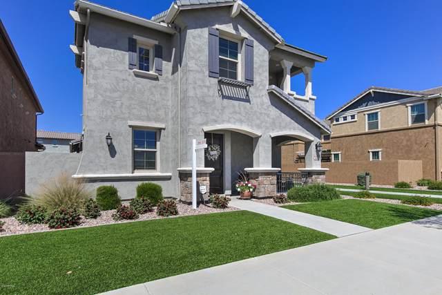 3660 E Vest Avenue, Gilbert, AZ 85295 (MLS #6059650) :: My Home Group