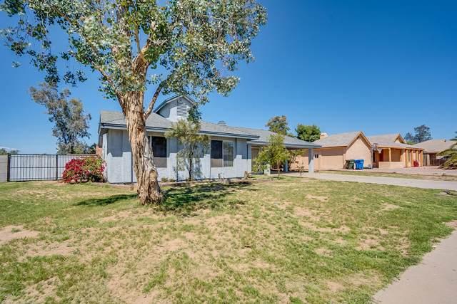 2246 W Runion Drive, Phoenix, AZ 85027 (MLS #6059684) :: Conway Real Estate