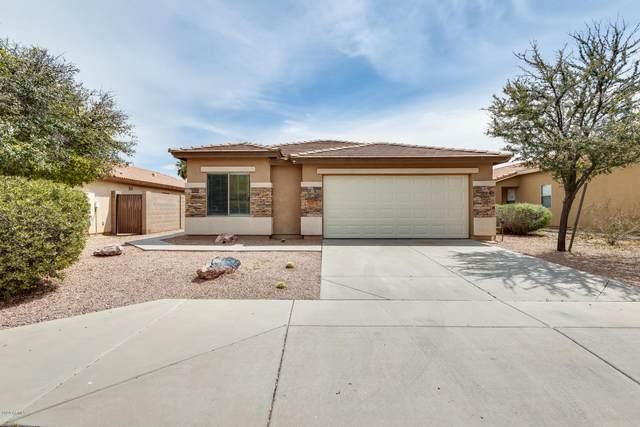 33161 N Cat Hills Avenue, Queen Creek, AZ 85142 (MLS #6059708) :: The Kenny Klaus Team