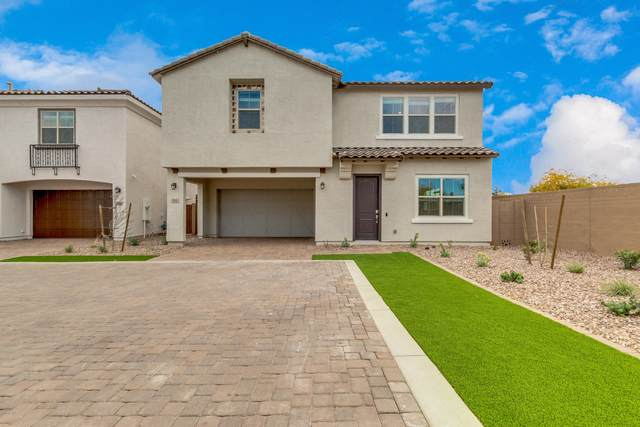 704 N Bay Drive, Gilbert, AZ 85233 (MLS #6059726) :: Yost Realty Group at RE/MAX Casa Grande