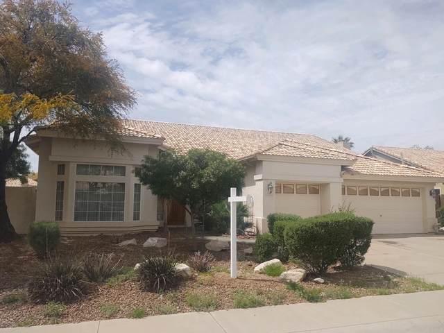 2505 E Rocky Slope Drive, Phoenix, AZ 85048 (MLS #6059744) :: Lucido Agency