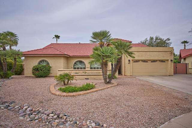 1414 N Alder Drive, Chandler, AZ 85226 (MLS #6059763) :: The Bill and Cindy Flowers Team