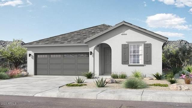 14360 W Hackamore Drive, Surprise, AZ 85387 (MLS #6059795) :: Conway Real Estate