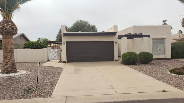 25826 S Cloverland Drive, Sun Lakes, AZ 85248 (MLS #6059797) :: Conway Real Estate