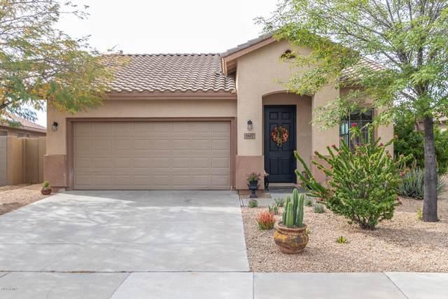 1807 W Hemingway Lane, Phoenix, AZ 85086 (MLS #6059808) :: Kepple Real Estate Group
