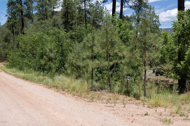 0000 Jack Mountain Loop, Young, AZ 85554 (MLS #6059814) :: Conway Real Estate