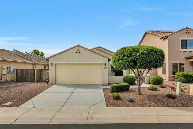 18441 W Bridger Street, Surprise, AZ 85388 (MLS #6059816) :: Arizona Home Group