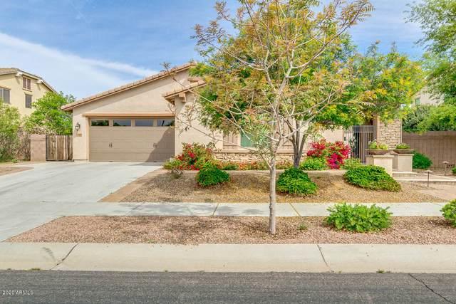 116 W Lynx Way, Chandler, AZ 85248 (MLS #6059826) :: Conway Real Estate