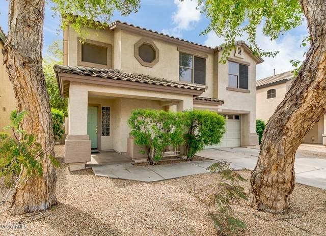 1757 E Loma Vista Street, Gilbert, AZ 85295 (MLS #6059835) :: Conway Real Estate
