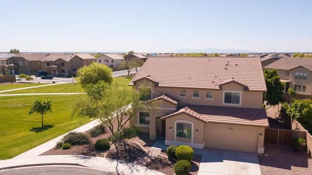 12137 W Villa Hermosa Court, Sun City, AZ 85373 (MLS #6059854) :: The Laughton Team