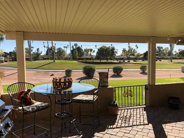 10223 E Minnesota Avenue, Sun Lakes, AZ 85248 (MLS #6059859) :: Conway Real Estate