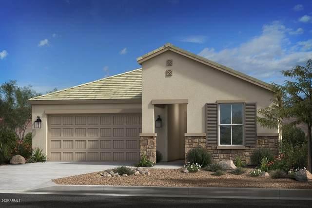 1043 S Rico, Mesa, AZ 85204 (MLS #6059864) :: Yost Realty Group at RE/MAX Casa Grande
