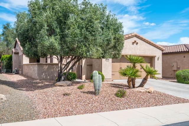 12524 W Jasmine Trail, Peoria, AZ 85383 (MLS #6059872) :: Long Realty West Valley