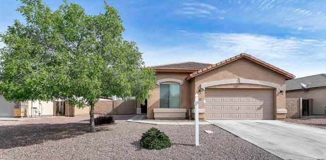 24808 W Dove Peak, Buckeye, AZ 85326 (MLS #6059980) :: Brett Tanner Home Selling Team