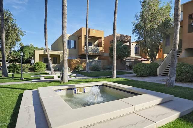 3500 N Hayden Road #501, Scottsdale, AZ 85251 (MLS #6060021) :: Devor Real Estate Associates