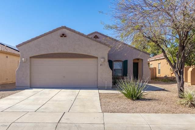 17173 W Saguaro Lane, Surprise, AZ 85388 (MLS #6060058) :: Conway Real Estate