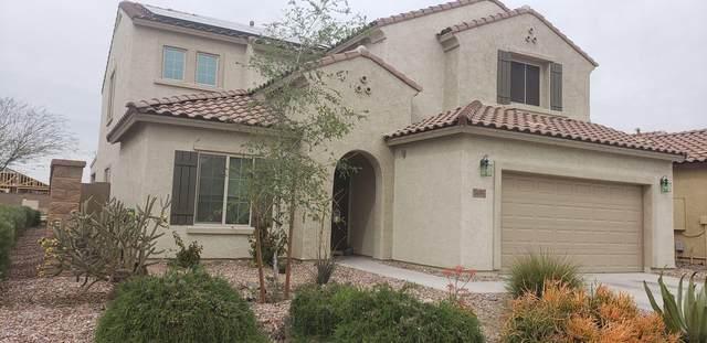 5486 W Montebello Way, Florence, AZ 85132 (MLS #6060059) :: The Garcia Group