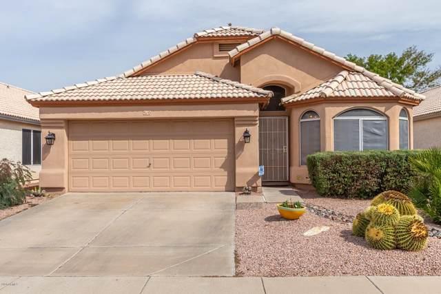 510 W Aire Libre Avenue, Phoenix, AZ 85023 (MLS #6060074) :: REMAX Professionals