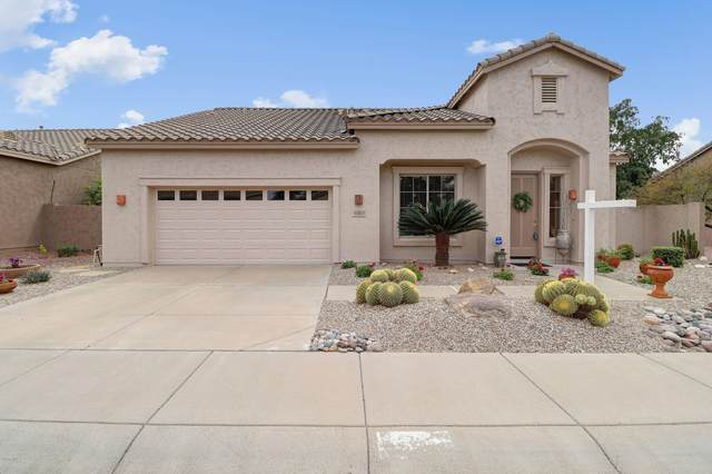 4901 E Annette Drive, Scottsdale, AZ 85254 (MLS #6060089) :: The Results Group