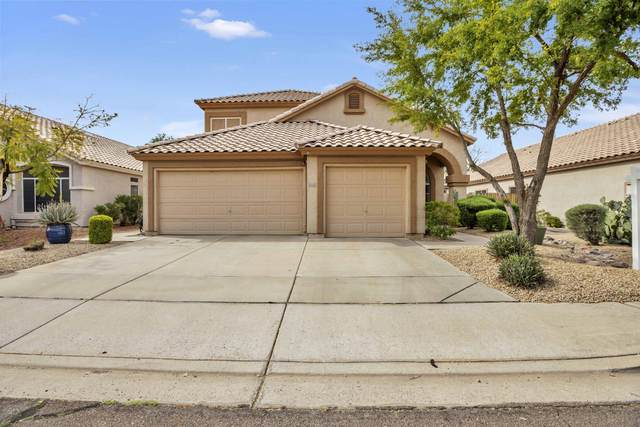 173 W El Freda Road, Tempe, AZ 85284 (MLS #6060098) :: The Results Group