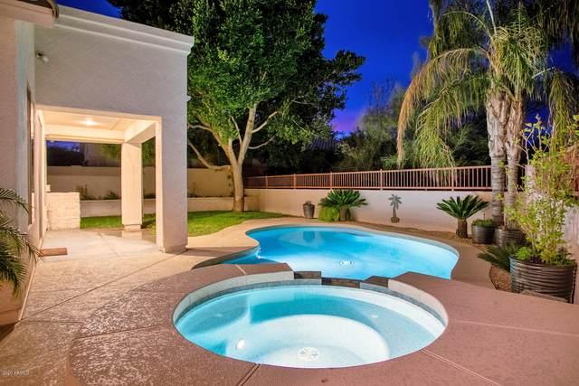 6434 W Via Dona Road, Phoenix, AZ 85083 (MLS #6060112) :: Keller Williams Realty Phoenix