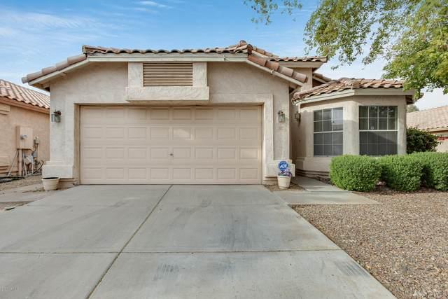 3312 E Brookwood Court, Phoenix, AZ 85048 (MLS #6060115) :: Lux Home Group at  Keller Williams Realty Phoenix