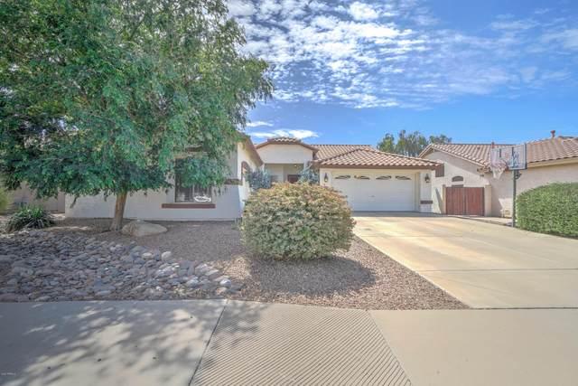 7179 W Buckskin Trail, Peoria, AZ 85383 (MLS #6060126) :: Homehelper Consultants