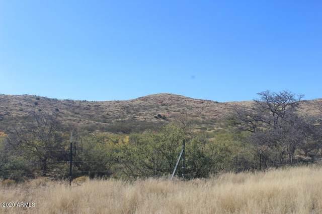 TBD E Gleeson Road, Elfrida, AZ 85610 (MLS #6060177) :: The Daniel Montez Real Estate Group