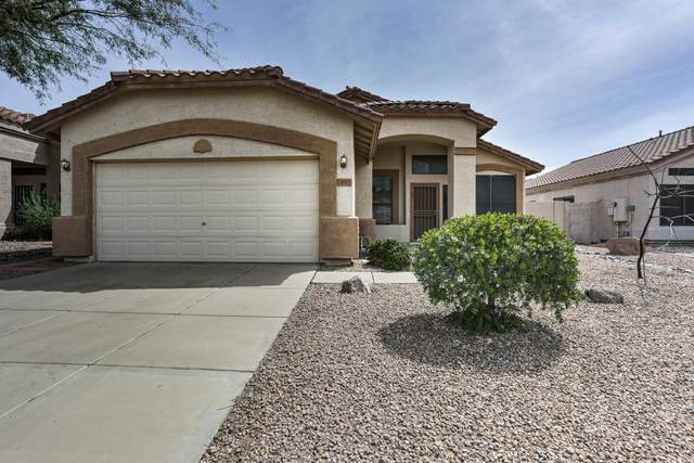20421 N 39TH Drive, Glendale, AZ 85308 (MLS #6060184) :: My Home Group