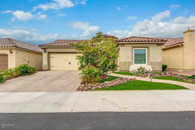 3930 E Augusta Avenue, Chandler, AZ 85249 (MLS #6060188) :: The Results Group
