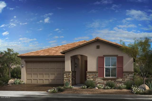 15402 W Edgemont Avenue, Goodyear, AZ 85395 (MLS #6060190) :: Conway Real Estate