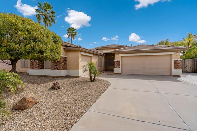 20439 N 88TH Lane, Peoria, AZ 85382 (MLS #6060210) :: The Bill and Cindy Flowers Team