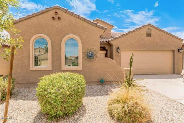23639 W Chickasaw Street, Buckeye, AZ 85326 (MLS #6060216) :: Long Realty West Valley