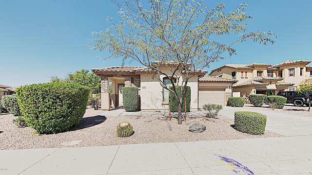 4332 E Muirfield Street, Gilbert, AZ 85298 (MLS #6060256) :: The Results Group