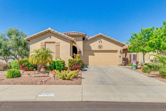 17822 W Statler Drive, Surprise, AZ 85388 (MLS #6060265) :: Conway Real Estate