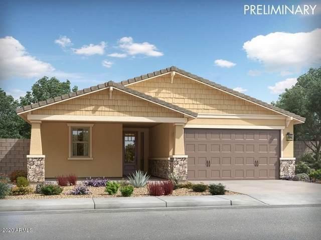 13455 N 142ND Avenue, Surprise, AZ 85379 (MLS #6060281) :: The Garcia Group