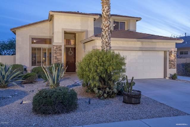 1815 W Glenhaven Drive, Phoenix, AZ 85045 (MLS #6060290) :: Lux Home Group at  Keller Williams Realty Phoenix