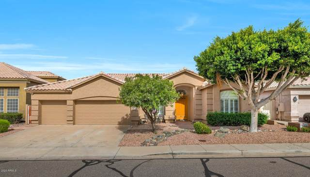 16832 S 18TH Way, Phoenix, AZ 85048 (MLS #6060306) :: Yost Realty Group at RE/MAX Casa Grande
