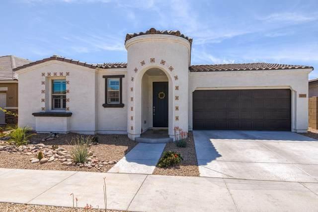 22783 E Via Del Palo, Queen Creek, AZ 85142 (MLS #6060388) :: Relevate | Phoenix