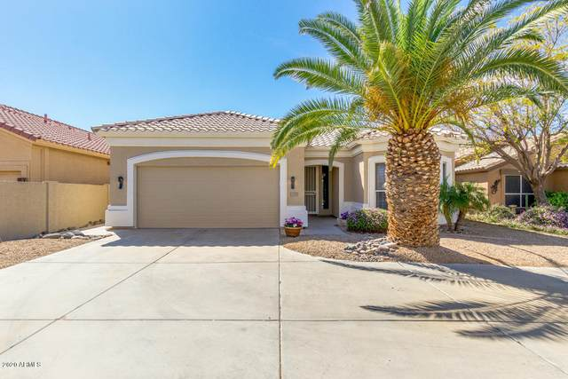 11535 W Lizard Court, Surprise, AZ 85378 (MLS #6060413) :: Conway Real Estate