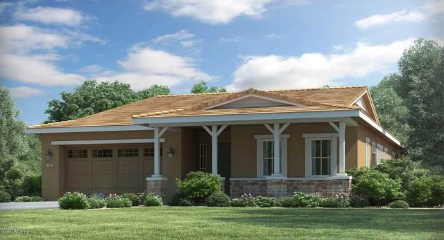 5015 N 206TH Drive, Buckeye, AZ 85396 (MLS #6060418) :: The Property Partners at eXp Realty