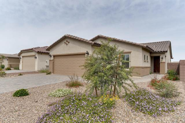 374 W Cucumber Tree Avenue, San Tan Valley, AZ 85140 (MLS #6060425) :: The Laughton Team