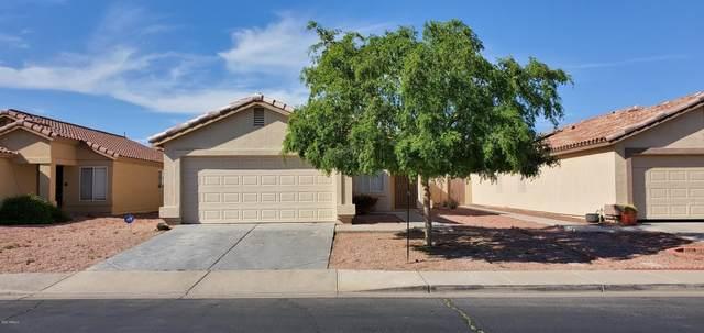 12642 W Paradise Drive, El Mirage, AZ 85335 (MLS #6060428) :: The Luna Team
